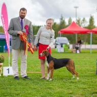 Satumeren Madonna BIS1 Let's Go Showssa Vantaalla 2015 / Satumeren Madonna won BIS1 at the Let's Go Show 2015 in Vantaa