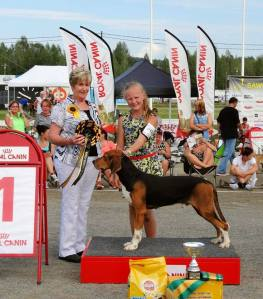 Emma ja Satumeren Niko, ensimmäinen Junior Handler -osakilpailuvoitto Kuopiossa vuonna 2014 / Emma took her first ticket to the Junior Handler finals with Niko in Kuopio 2014