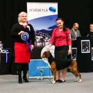 Emma voitti Junior Handlereiden Keski-Suomen piirinmestaruuden Jyväskylässä 14.10.2017, tuomarina Niina Romo / Emma won Central Finland district championship at Jyväskylä 14.10.2017 under judge Niina Romo